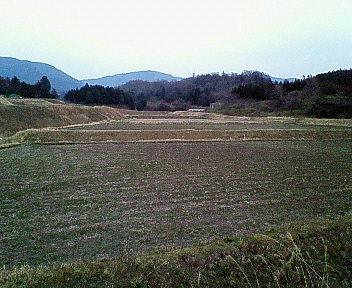 2006031